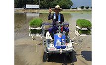 岐阜の米通販「農家のお米.com」の田植えの画像