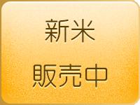 岐阜の米通販「農家のお米.com」の新米の販売中、ハツシモ