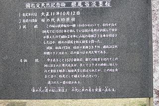農家のお米.comの石碑の写真
